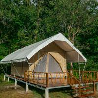 New tented eco camp keeps rainforest standing in Cardamom Mountains in Cambodia