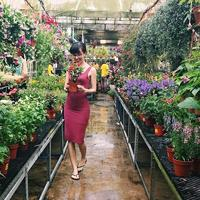 Where to buy gardening supplies and plants in Singapore