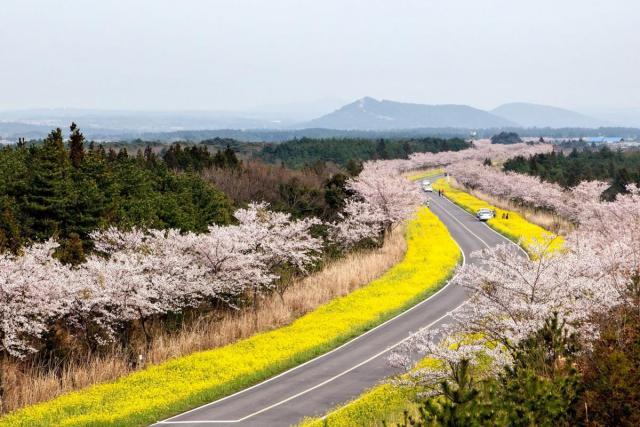 3820143201500012k_Beautiful Road.jpg