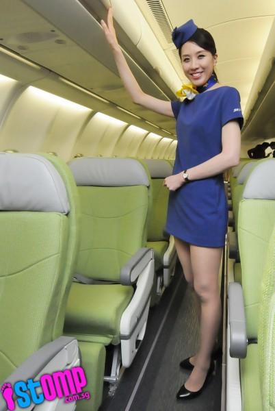 Japanese skirt sex uniform in plane