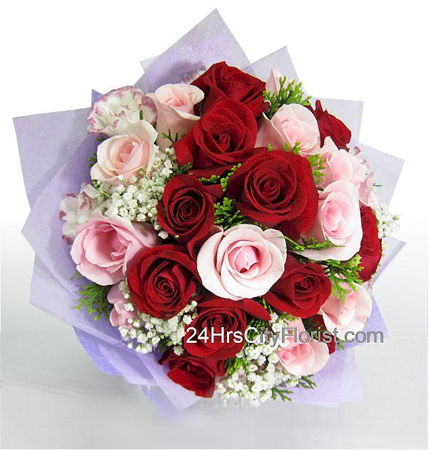 beautiful-rose.jpg