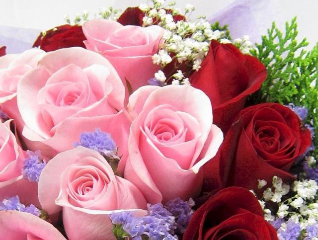 24-rose-bouquet-closeup.jpg