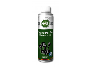 https://www.mycarforum.com/uploads/sgcarstore/data/10//ENGINE PURIFIER 300ML_39816_1.png