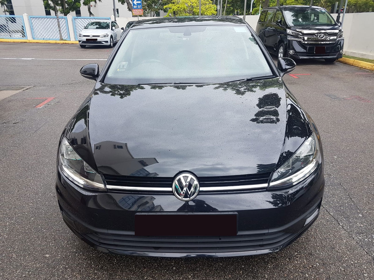Volkswagen Golf TSI 1.0A (For Rent)