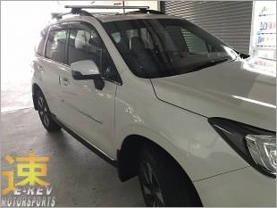 https://www.mycarforum.com/uploads/sgcarstore/data/3//SubaruForester2018DoorMouldingPic4_76438_1.jpg