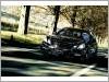 W212-Wald-0011.jpg