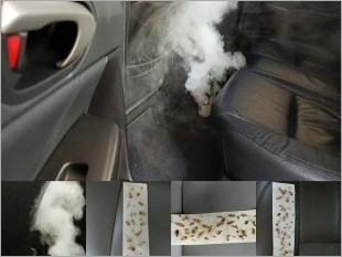 https://www.mycarforum.com/uploads/sgcarstore/data/9/Fumigation Anti Pest Treatment_69677_1_crop.jpg